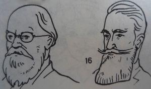 Der Umhängebart (rechts) macht Sinn © Duden.Bilderwörterbuch. Bibliographisches Institut.