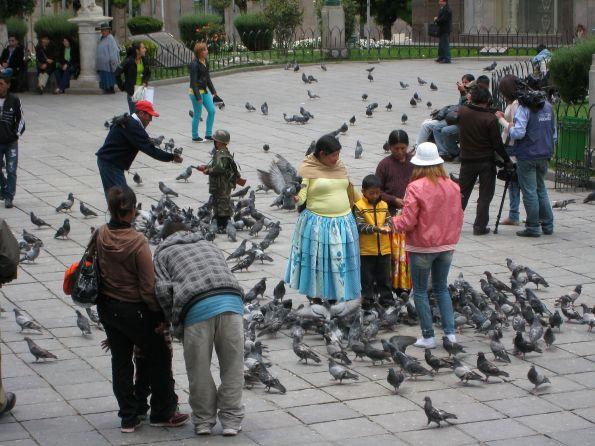 In La Paz hat man noch Respeckt vor den Tauben