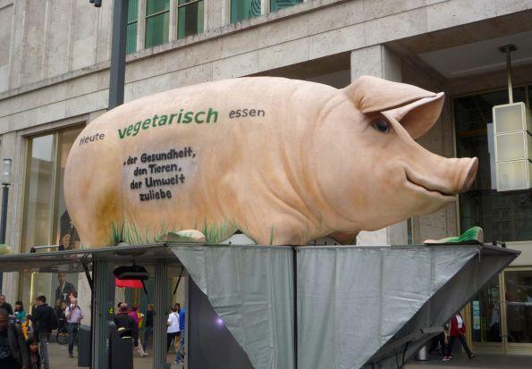 Den armen Schweinen soll geholfen werden