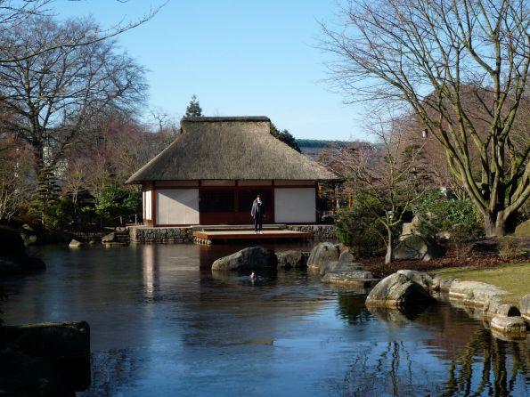Hier könnte ein Narziss sich spiegeln und schönfinden. Japanischer Garten in Planten un Blomen Hamburg