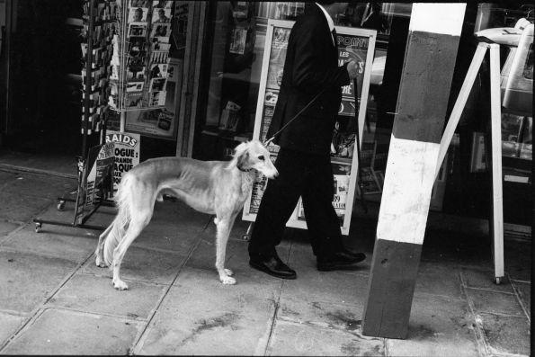 Herr und Hund in Budapest 1986 © Christian Brachwitz