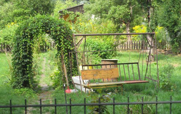 Auch Berliner Kleingärtner sind involviert
