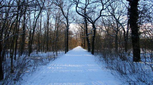 Leben und Rauchen im Winter © ADe